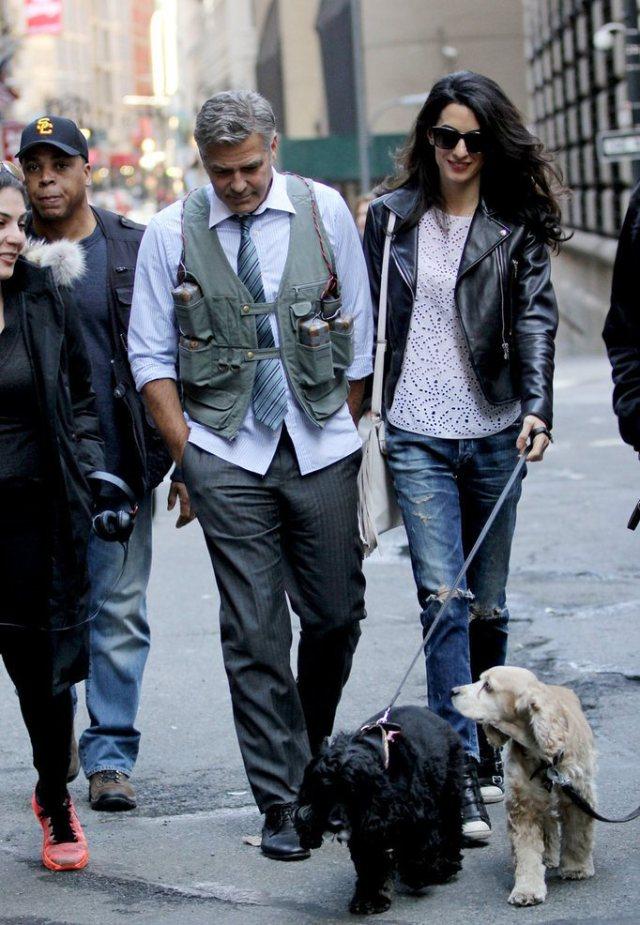 Amal-Alamuddin-Visits-George-Clooney-Set-His-Dog (11)